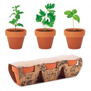 Zestaw 3 glinianych doniczek z nasionami mięty, pietruszki i bazylii